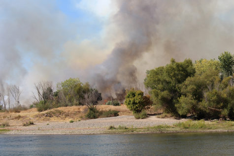 A two-alarm grass fire burns along the American River Parkway near Cal Expo on Thursday, Sept. 15. The surrounding area was evacuated and one person was being treated for smoke inhalation. (Photo by Kameron Schmid)