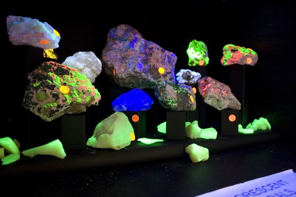 luorescent minerals were set in a black box to accent the fluorine-bearing mineral up for auction in the Union.:Claire Padgett