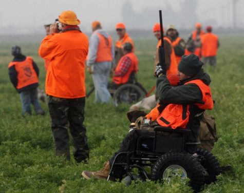 Hunters target pheasants at a mobility impaired outing. Both disabled and able-bodied participate in the event.