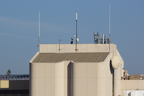 A man stands on top of the Library this morning anticipating the arrival of the space shuttle Endeavour.