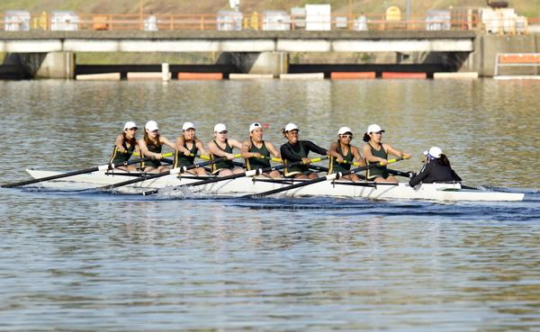 The Sacramento State Hornet rowing team pushes toward the finish line of the second novice eight race on Saturday against Humboldt State at the Sacramento State Invitational on Lake Natoma. The Hornets finished in first with a time of 7:36.8.