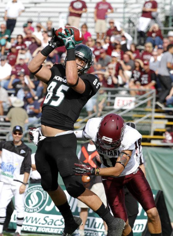 Sacramento State tight end Cole Hikutini (85) makes a catch over Montana's JR Nelson (18) Saturday November 2, 2013 at Sacramento State.