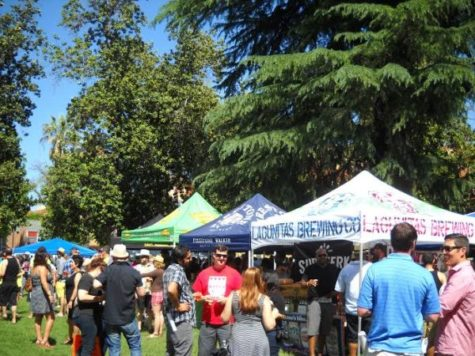 Fremont Park filled up for the second annual Chili and Beer Festival.