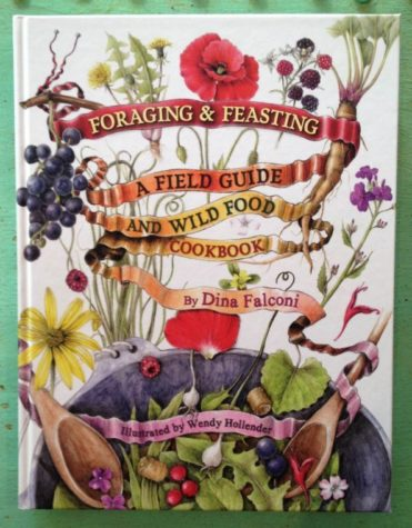 Feasting and foraging: A new way of life