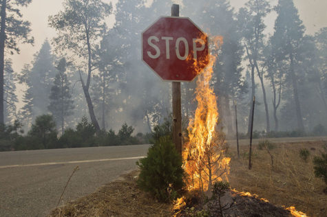 Fire burns near road signage near Uncle Tom's Cabin in El Dorado County, Calif., on Thursday, Sept. 18, 2014. The King fire has burned more than 70,000 acres. (Randall Benton/Sacramento Bee/MCT)