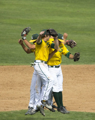 Sacramento State baseball's infielders celebrate after getting the win against the University of Texas-Pan American on Sunday, March 22, 2015 at John Smith Field. The Hornets are now 3-0 in conference play.