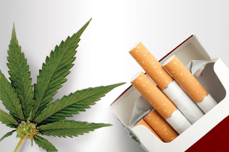 Why you should choose weed over cigarettes