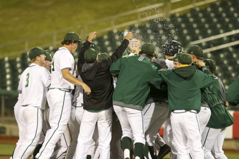 Hornets win in walk-off fashion