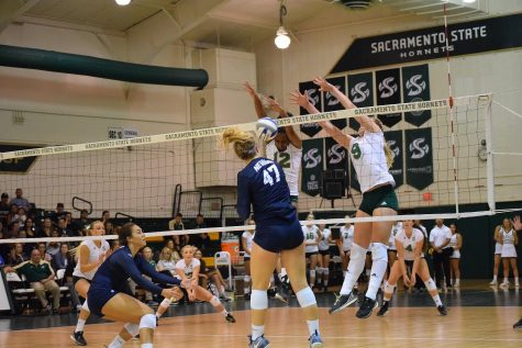Hornets struggle as hosts of Sac State Invitational