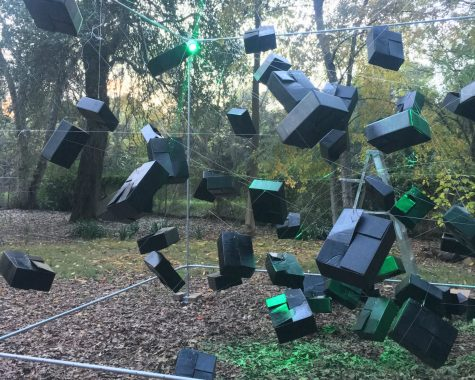 Art student reinterprets Arboretum's darkness as own gloomy dreams
