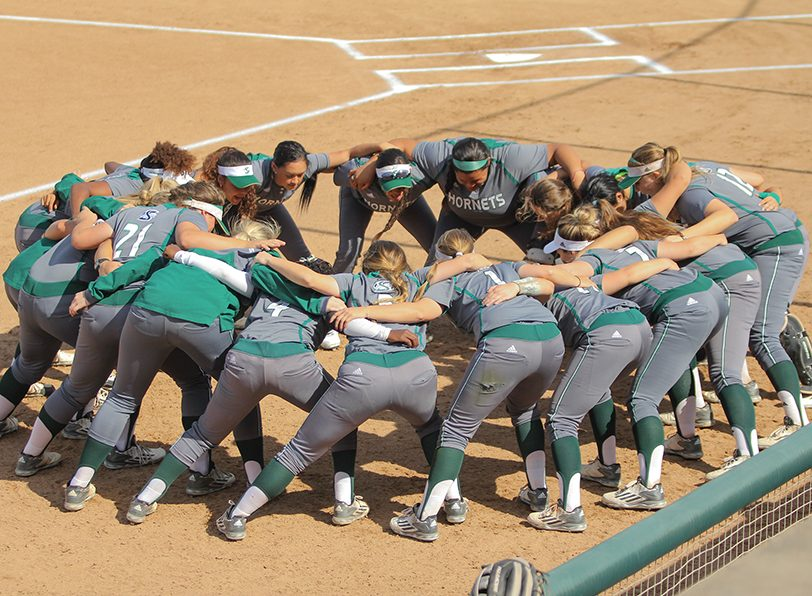 The Sacramento State softball team is projected to finish in second place by the Big Sky coaches' preseason poll. Sac State finished last year with a 28-22 overall record and 16-6 in back-to-back conference seasons. (Photo by Matthew Dyer)
