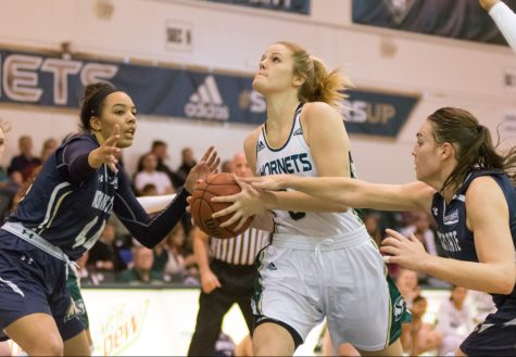 Hornets swarmed by Montana State women's basketball team 104-82