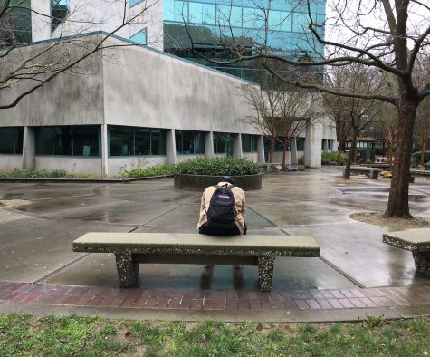 Sac State's singles get creative for Valentine's Day