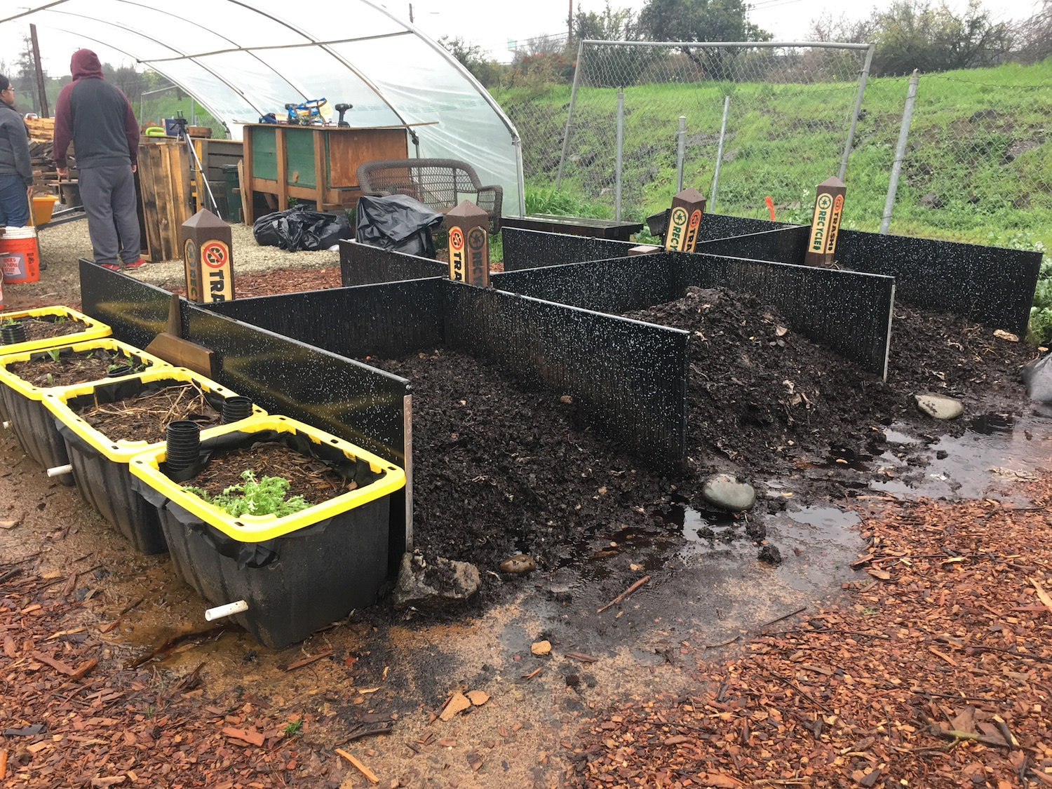 The pilot program started this semester when compost bins were put out to collect food scraps. From there, the scraps are moved to the composting yard at the back of Parking Lot 10. (Photo by Raul Hernandez)