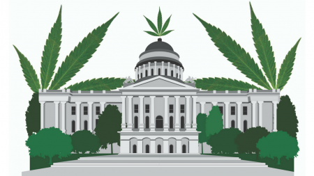 The people, policies and politics of pot