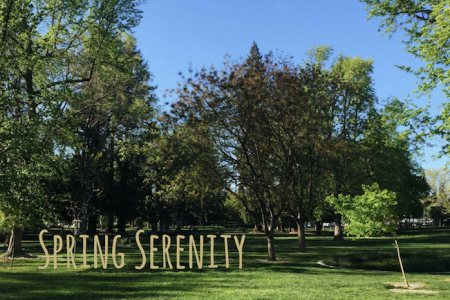 Sac State grows more than just students — serene study spots are also in bloom