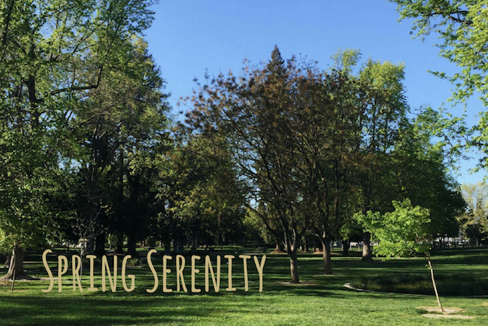 Sacramento State is known as one of the greenest campuses west of the Mississippi River. (Photo by Myha Sanderford)