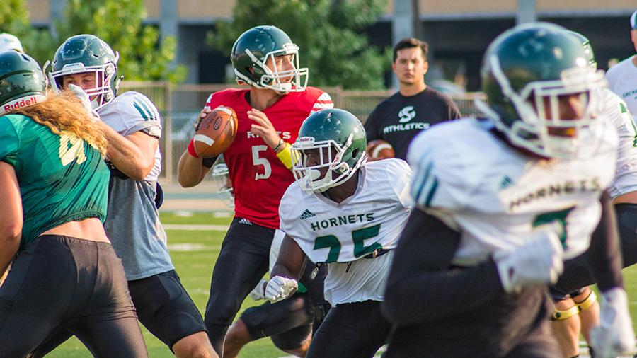 Sacramento State junior quarterback Kevin Thomson looks to throw the ball downfield during training camp Aug. 21 at Hornet Stadium.