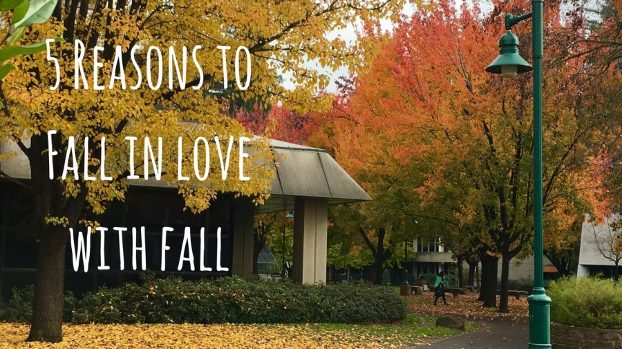 5+reasons+to+fall+in+love+with+fall