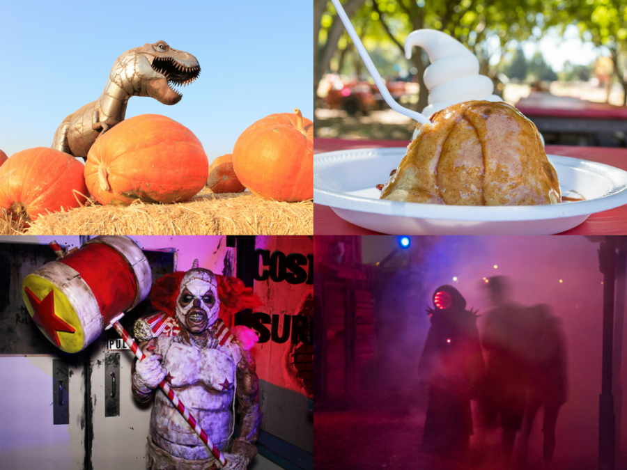 4 local Halloween attractions to haunt up some fun