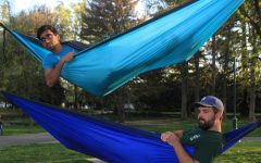 Sleep, study, or socialize — as long as you're doing it in a hammock