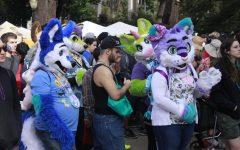 Furry fandom, subculture alive in Sacramento area