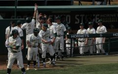 Hornets take opening WAC series despite snapped win streak