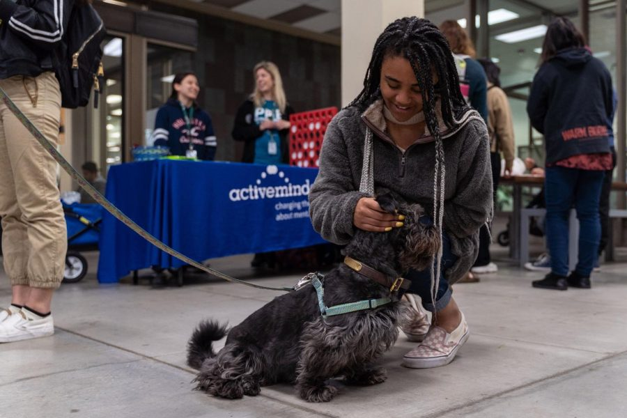 Student plays and pets dog during a puppy therapy session. Pet therapy is only one of the outlets Sac State offers to help with de-stressing and mental health.