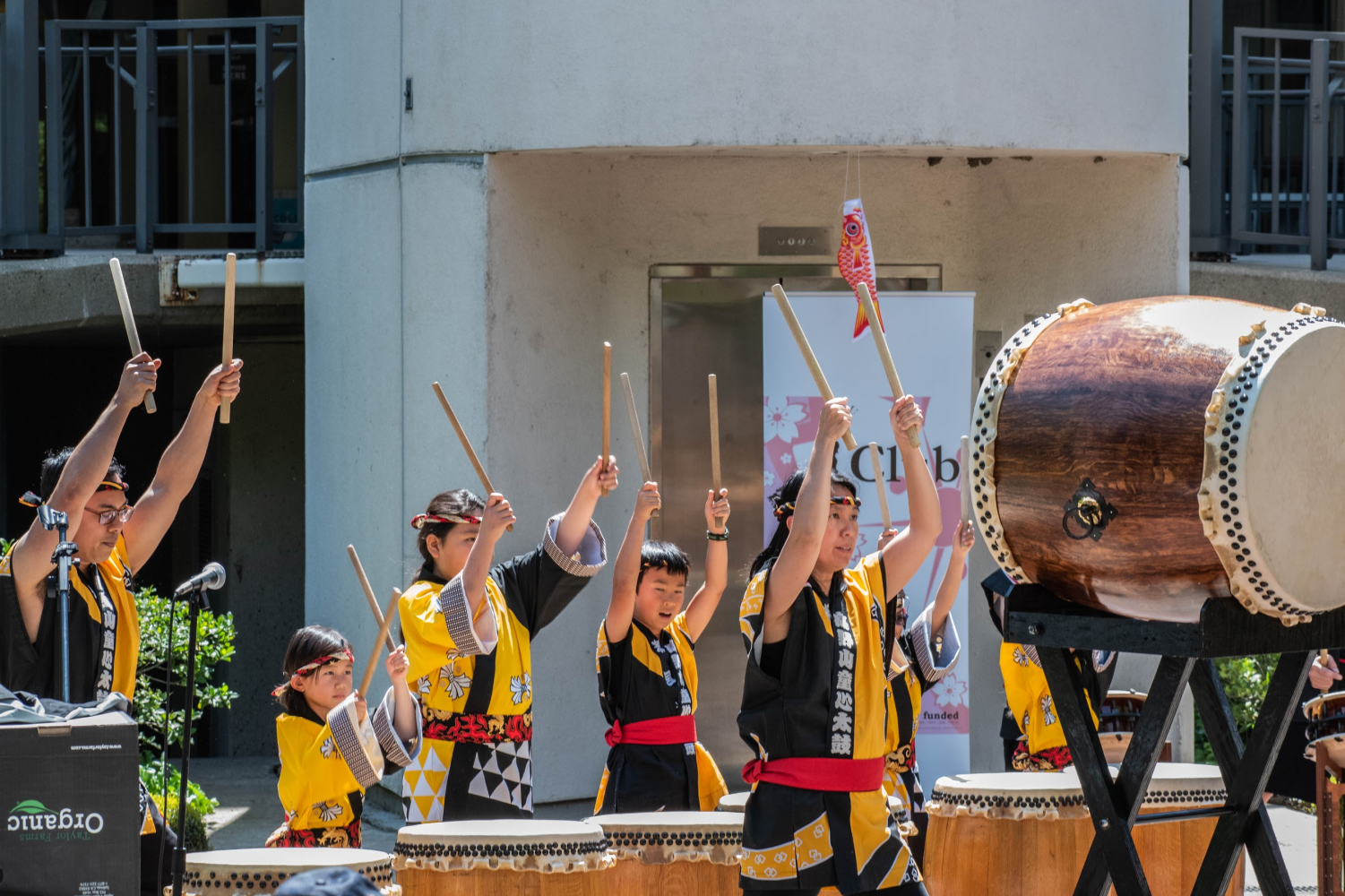 The Koyasan Spirit of Children Taiko Group strike taikos in unison during a performance for Sac State's Japan Day. Each taiko is unique and custom-made from sanded wine barrels.