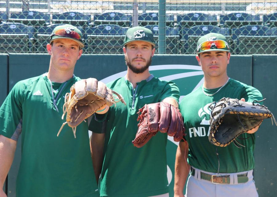 Sac State baseball team has maple fever – The State Hornet