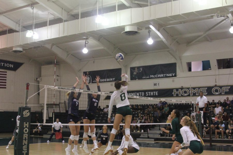 Sac State senior outside hitter Sarah Davis spikes the ball on Saturday, Aug. 31, against Nevada at the Nest. Davis was named tournament MVP and to the All-Tournament team.