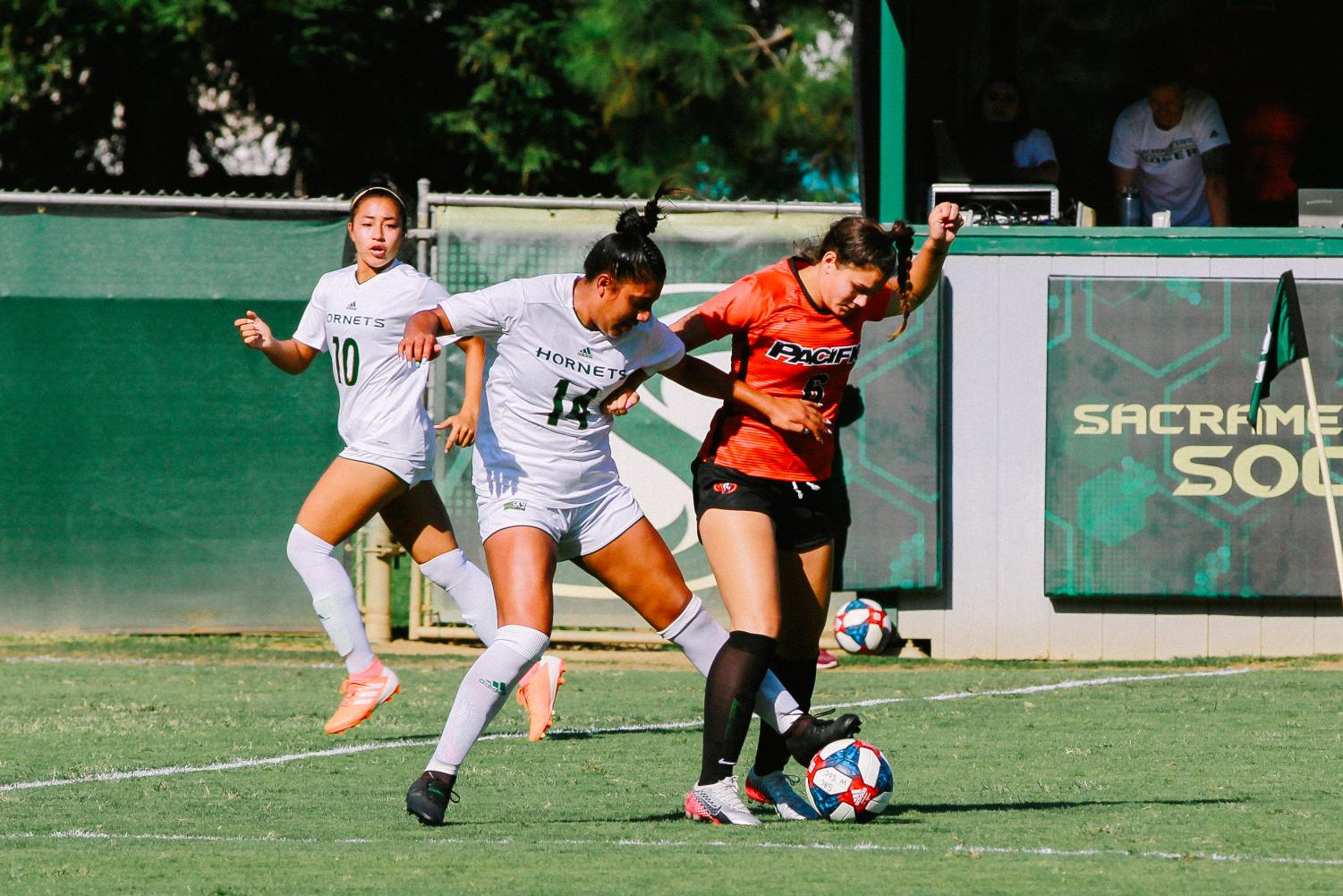 Sac+State+sophomore+forward+Erika+Sosa+steals+the+ball+against+Pacific+on+Thursday%2C+Sept.+5+at+Hornet+Field.+The+Hornets+defeated+the+Tigers+2-0.