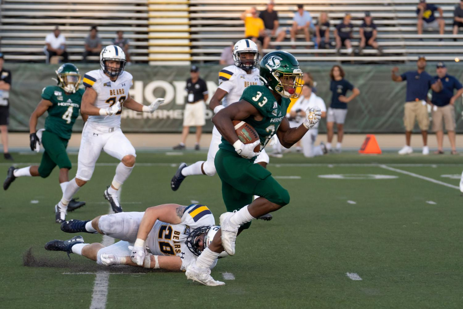 Sac State junior running back Elijah Dotson runs over the Bears defense against Northern Colorado on Saturday, Sept. 14 at Hornet Stadium. Dotson had a total of 158 yards receiving and one touchdown in the win.