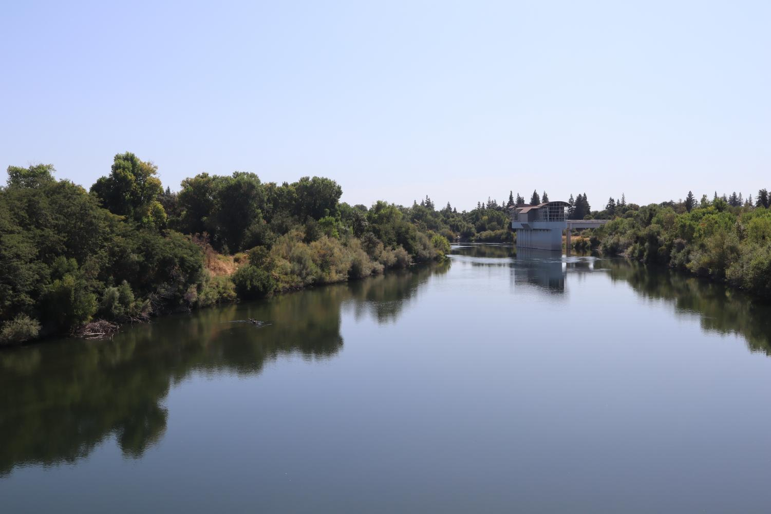 View of the American River from Sac State's Guy West Bridge. Sac State's Institute of Social Research partnered with Valley Vision to complete a survey on the Sacramento region's view on climate change.