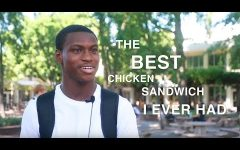 #SacStateSays 'How do you feel about the Popeyes chicken sandwich social media blow up?'
