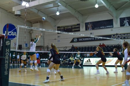 Sac State sophomore setter Ashtin Olin sets the ball against Southern Utah Thursday, Oct. 3 at The Nest. The Hornets lost to the Thunderbirds in five sets.