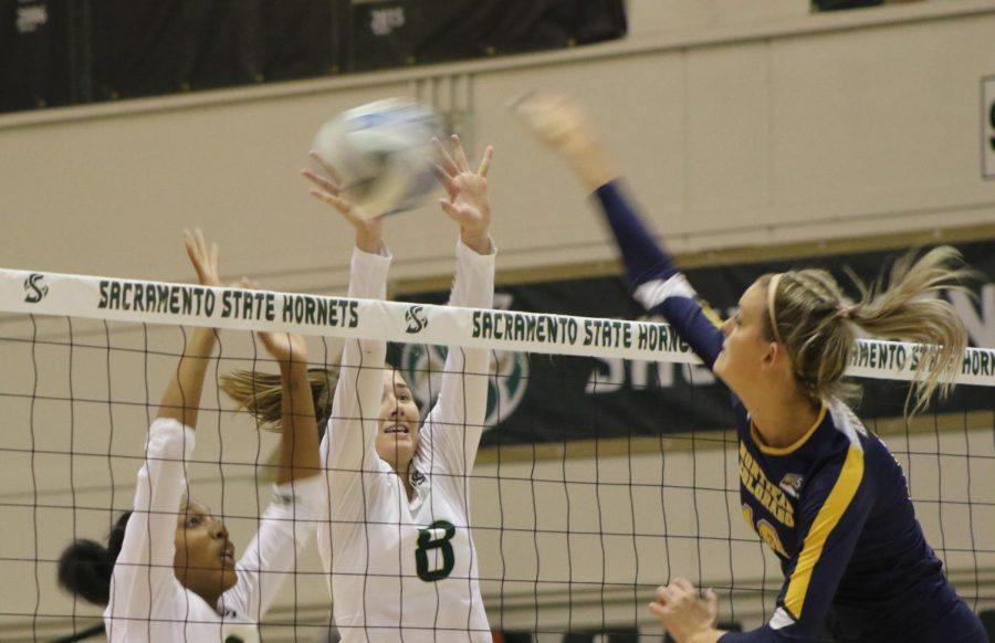 Sac State junior middle blocker Cianna Andrews and senior outside hitter Sarah Davis attempt to block Northern Colorado junior middle blocker Lauren Hinrichs Thursday, Oct. 17 at The Nest. The Hornets lost in four sets to the Bears.