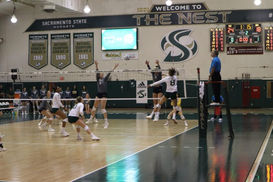 Sac State senior outside hitter Sarah Davis spikes the ball against Northern Arizona Saturday, Oct 5 at The Nest. Davis had 31 kills during the game, at times having more total kills then the Lumberjacks as a team.