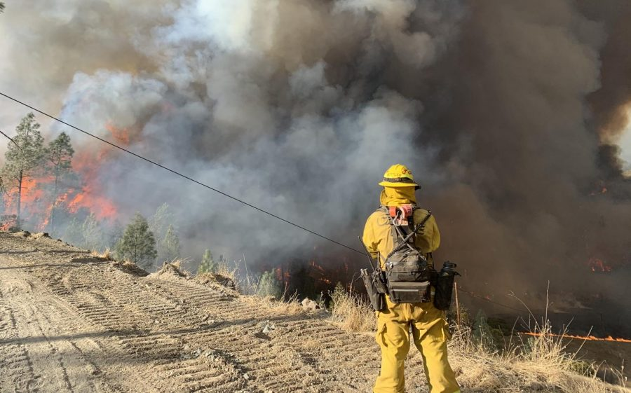 Sac State student and father face the Kincade Fire