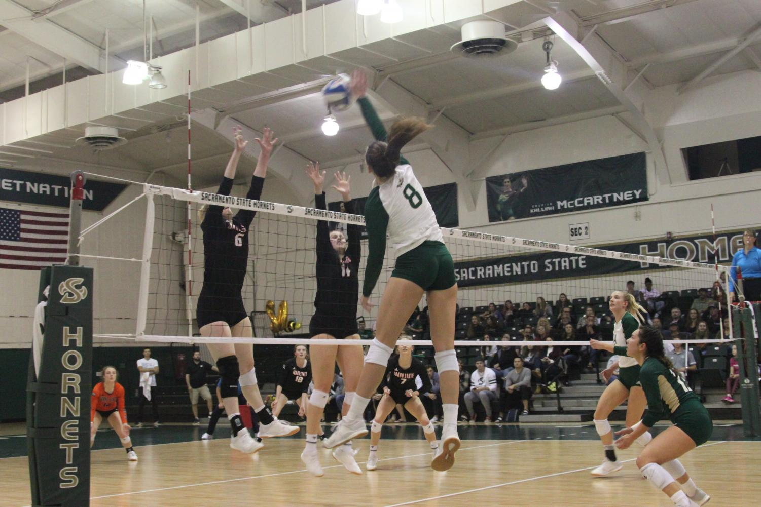 Sac State senior outside hitter Sarah Davis spikes the ball against Idaho State on Saturday, Nov. 16 at The Nest. As the lone senior, Davis had a match-high 17 kills in the win over the Tigers.