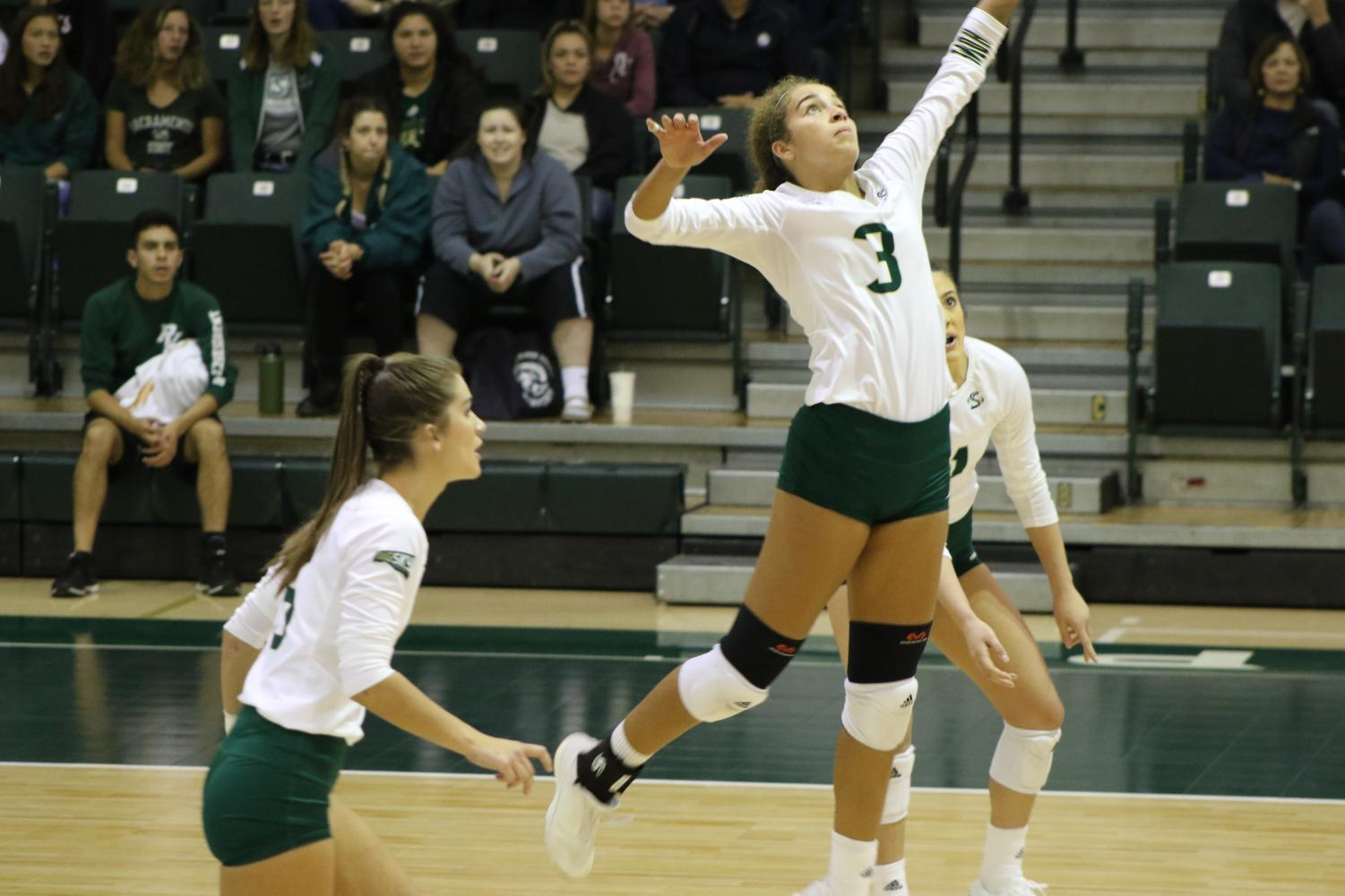 Sac State junior outside hitter Macey Hayden prepares to spike the ball against Weber State Thursday, Nov. 14 at the Nest. The Hornets were eliminated in the quarterfinals of the Big Sky Tournament by Montana State on Thursday, Nov. 28.