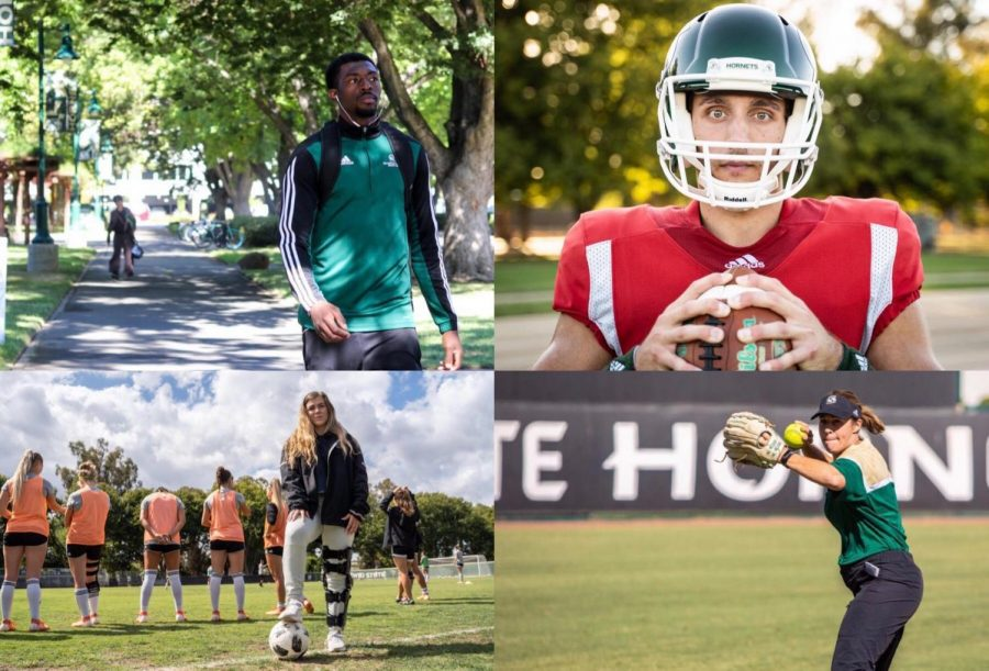 Senior center Joshua Patton, junior quarterback Kevin Thomson, senior goalkeeper Kaylyn Evans and softball head coach Lori Perez. Top left photo by Kelly Kiernan and remaining three by Eucario Calderon.