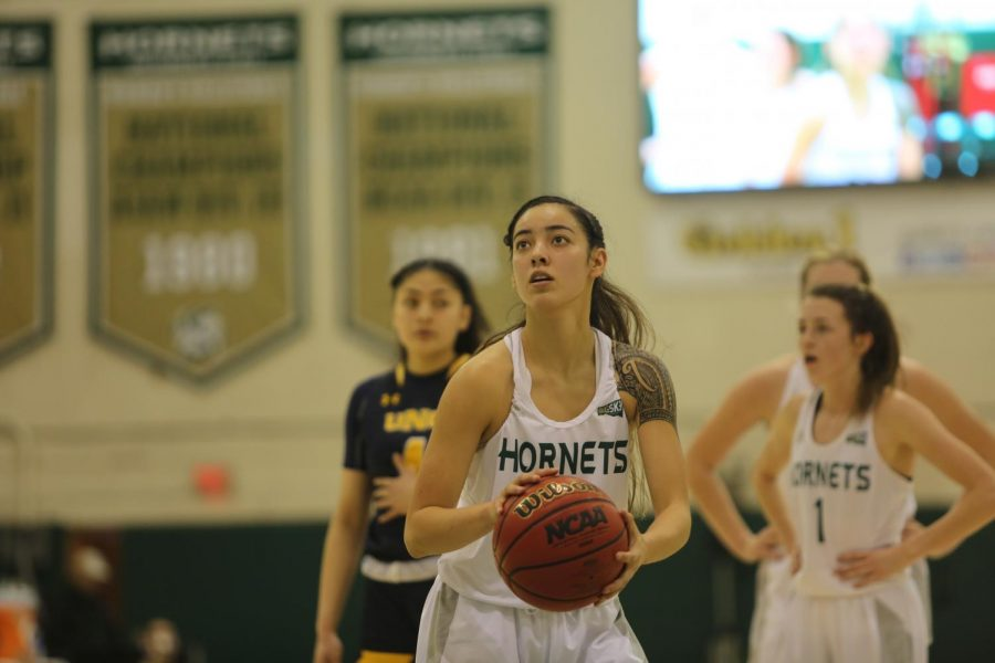 Sac+State+freshman+guard+Jordan+Olivares+prepares+to+shoot+a+free+throw+against+Northern+Colorado+on+Thursday%2C+Jan.+16+at+the+Nest.+The+Bears+defeated+the+Hornets+73-63.