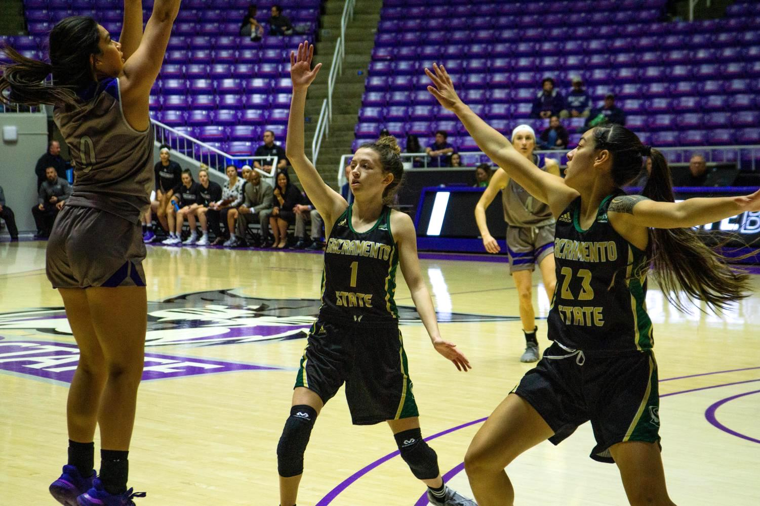 Weber State freshman guard Ula Chamberlain shoots over Sac State sophomore point guard Milee Enger (left) and freshman guard Jordan Olivares on Saturday, Jan. 11 at the Dee Events Center. The Hornets defeated the Wildcats 91-67 on the road.