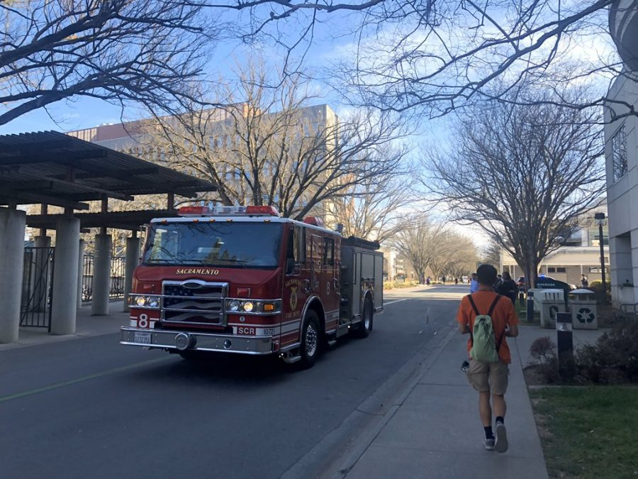 A branch fell and struck a Sac State student on the head on Monday, Feb. 17. The unidentified student was taken to the hospital with non-life threatening injuries, said Sacramento Fire Captain Keith Wade.