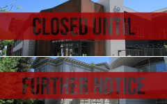 B Street Theater and the Crocker Art Museum were both forced to close their doors to the public due to statewide shelter-at-home orders. Both have pivoted to offering live events on Zoom with B Street holding live improv shows and the Crocker having live film and art discussions.