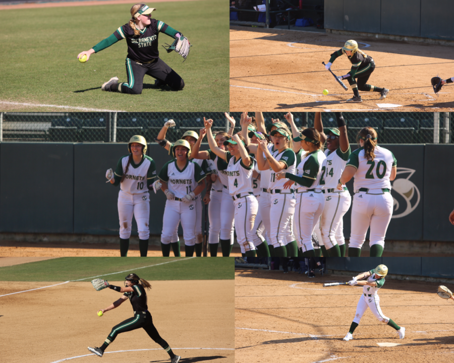 The Sac State softball team ended their season with a 14-11-1 record before its cancellation amid COVID-19 concerns. The Hornets were just a few days away from beginning conference play when the Athletics Department announced the cancellations.