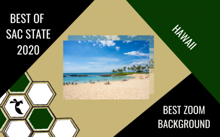 Hawaii voted 'Best Zoom Background' in 2020 Best of Sac State poll