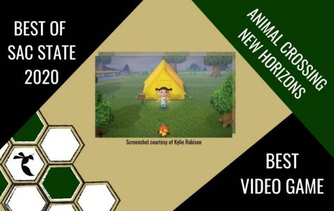 BEST VIDEO GAME: Animal Crossing: New Horizons
