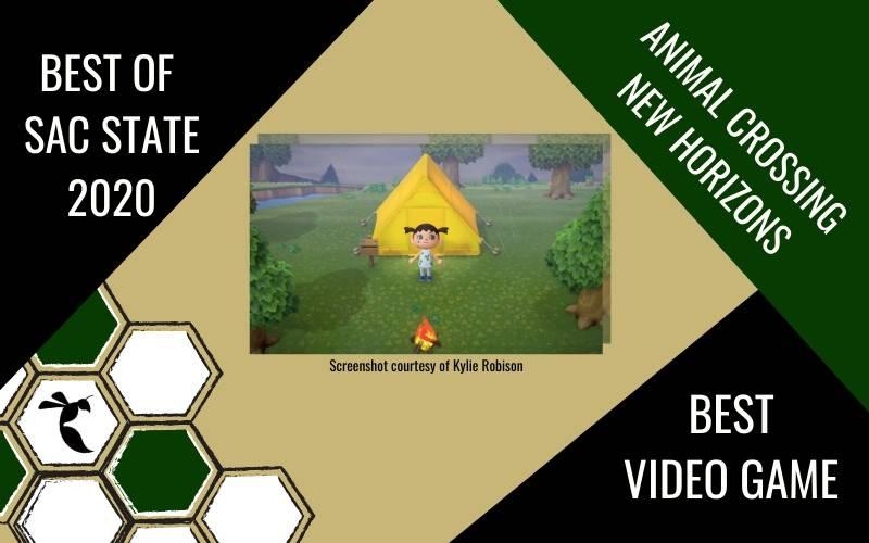 BEST VIDEO GAME: Animal Crossing: New Horizons